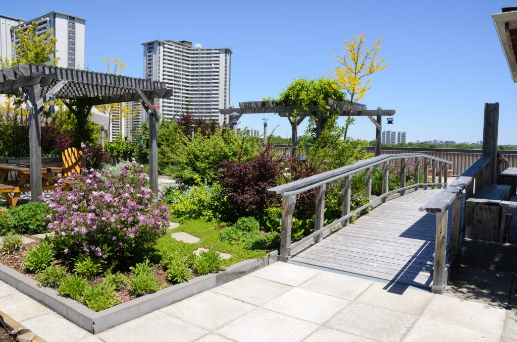 Landscaped garden on top of a rooftop