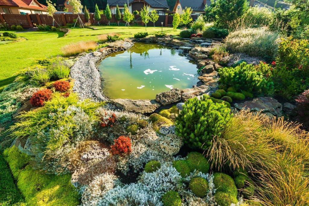 Backyard with mini man-made pond